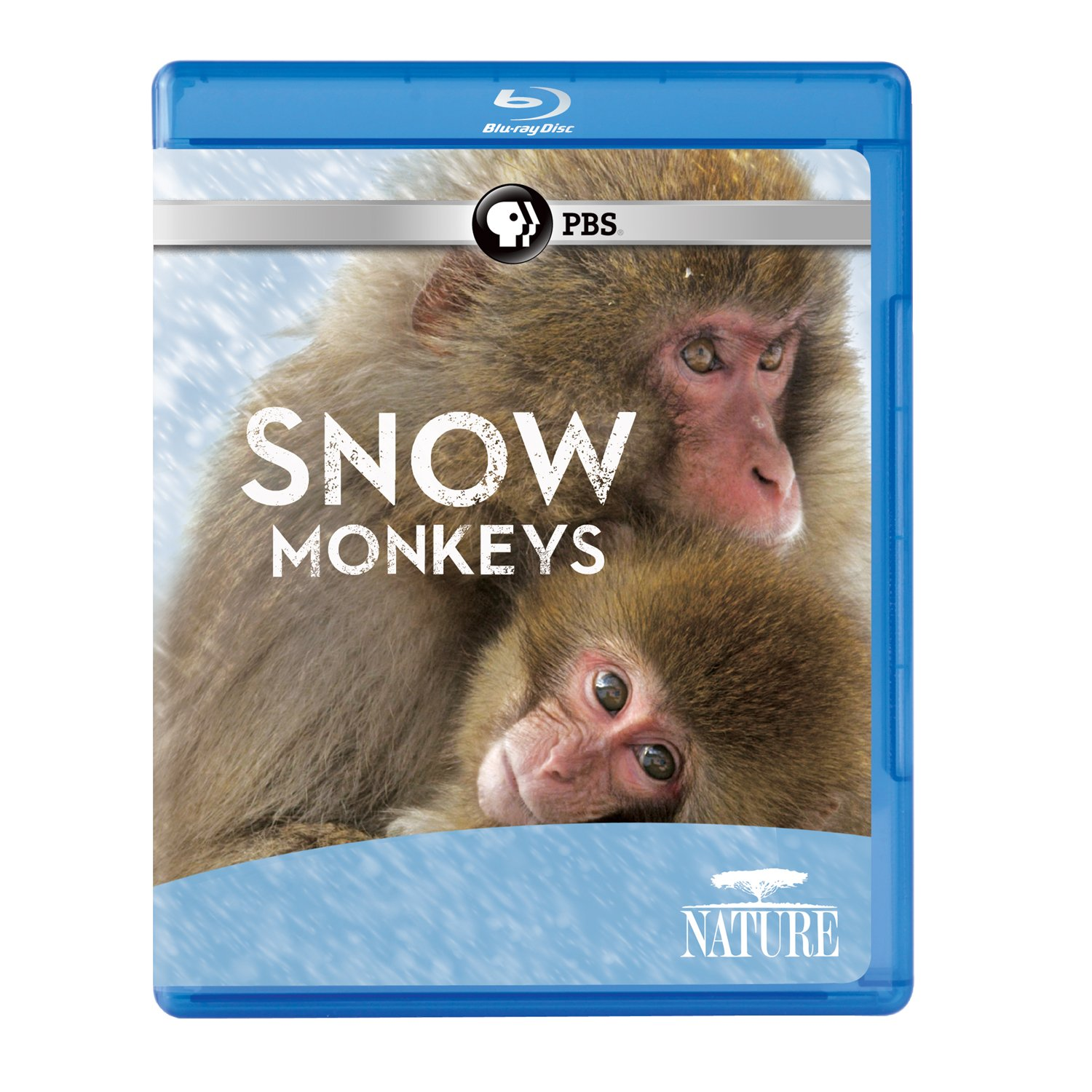 Blu-ray : Nature: Snow Monkeys (Blu-ray)