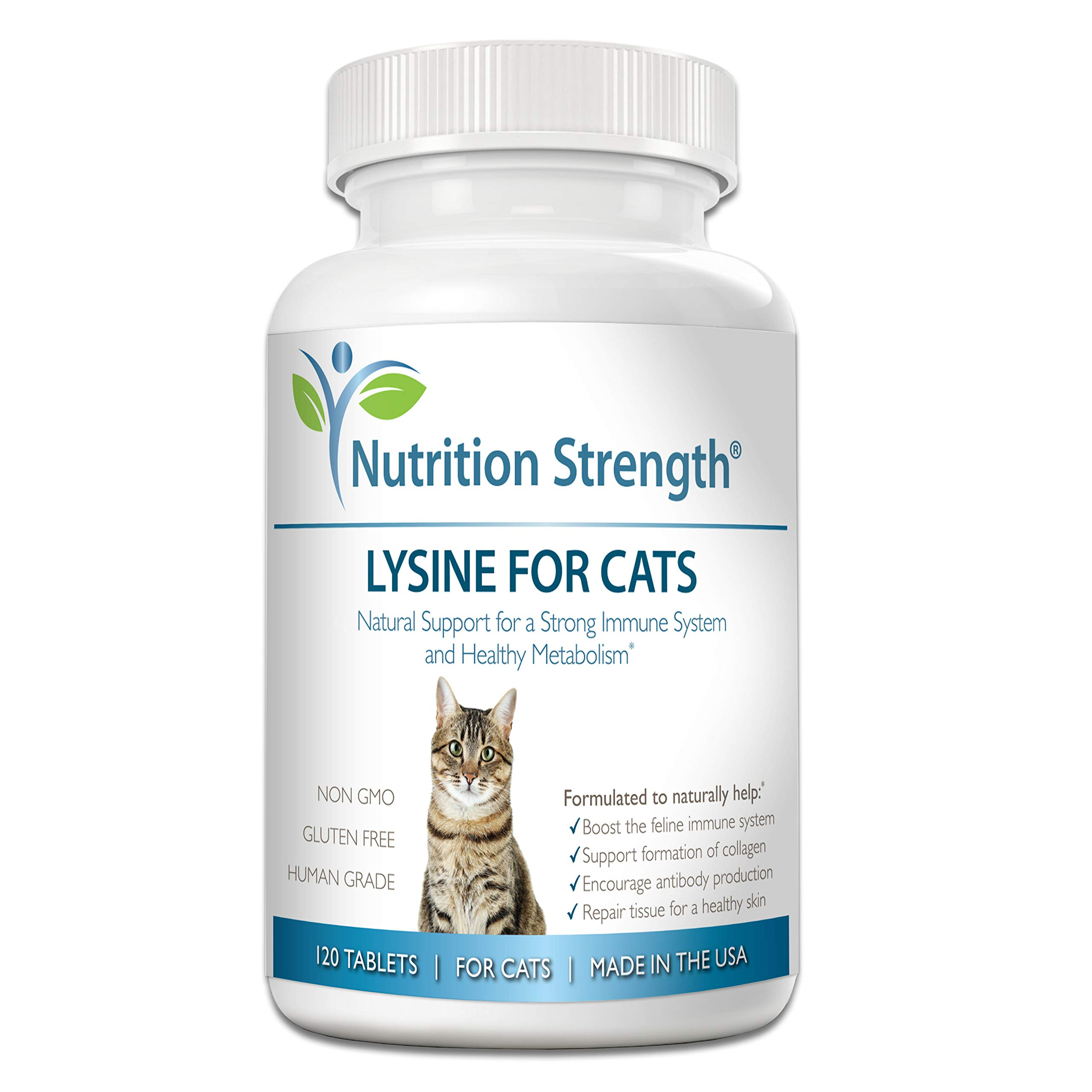 Nutrition Strength Lysine for Cats, Help Support The Feline Immune System, Promote Respiratory Health, Support Collagen Formation, Encourage Antibody Production, Plus CoQ10, 120 Chewable Tablets by Nutrition Strength