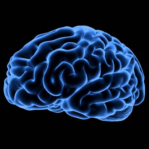 Neurosky Brainwave Recorder