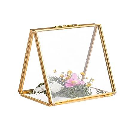 Amazon.com - NCYP 2 Side Standing Copper Brass Copper Glass ...