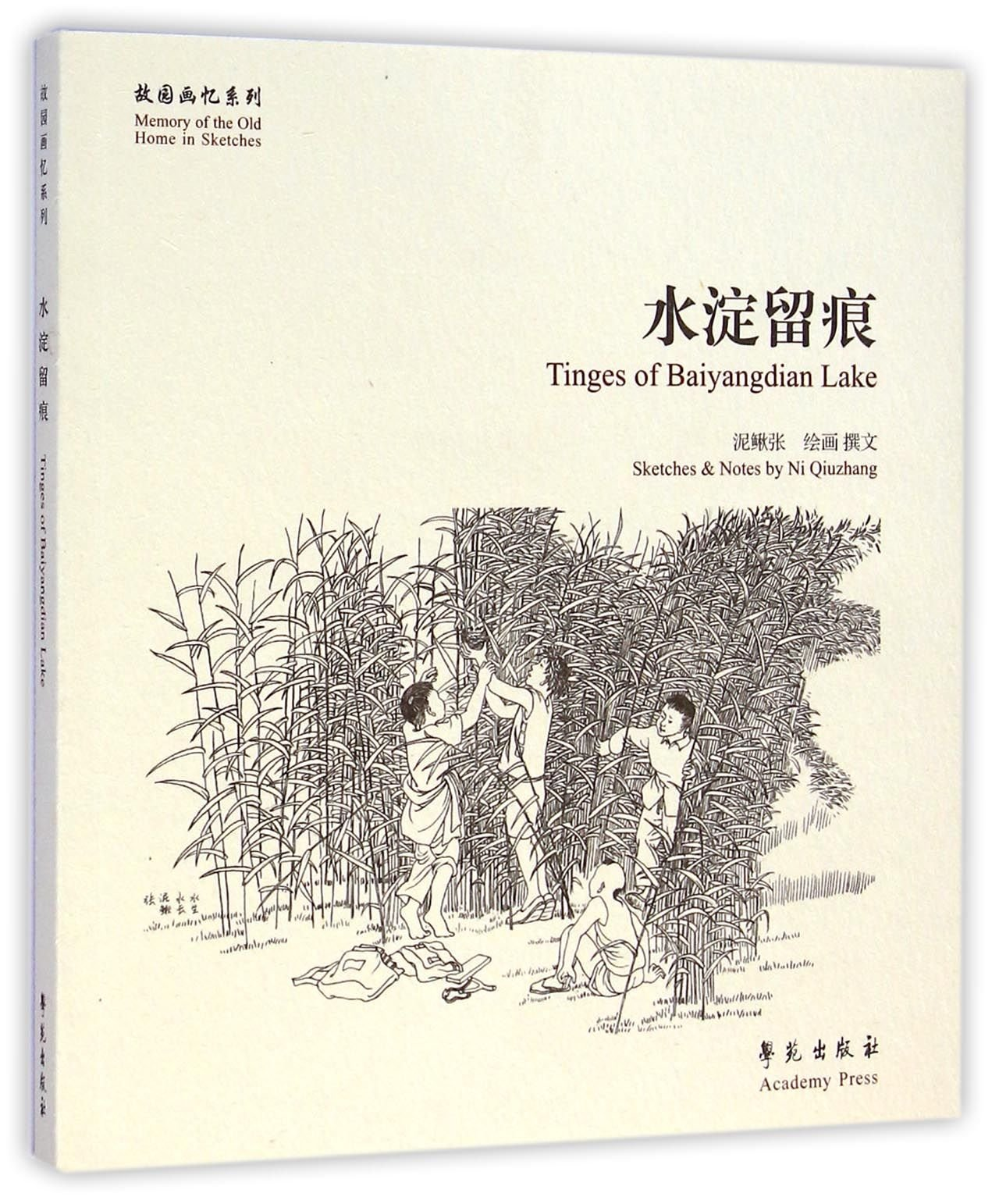 Download Countryside Memories of Loach Zhang (Chinese Edition) pdf