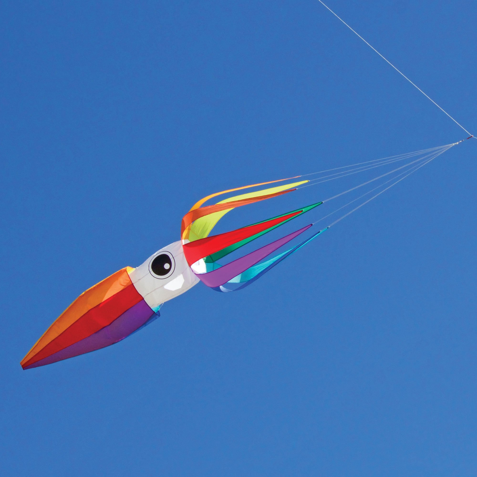 Into The Wind 11-ft Rainbow Flying Squid Kite Line Laundry by Into The Wind