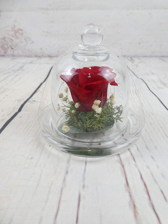 Rosa natural preservada roja blanca rosada azul salmon amarilla lila etc. Minicupula de cristal, con flores preservadas - Flores de Jacqueline Valencia