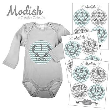 Amazon.com: 12 mensual bebé pegatinas, ciervo, niño, bebé ...