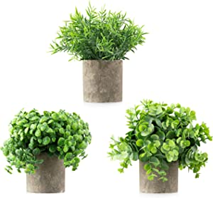 Casaluxe Potted Artificial Eucalyptus, Boxwood and Rosemary Plants, Set of 3 – Two-Toned Plastic Fake Greenery in Cement-Colored Paper Pulp Pots – Stylish, Modern Farmhouse Decor, 7 x 8 inches