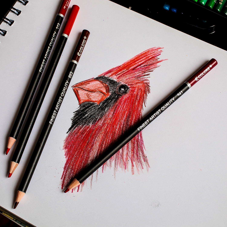 amazon com colore colored pencils 48 premium pre sharpened