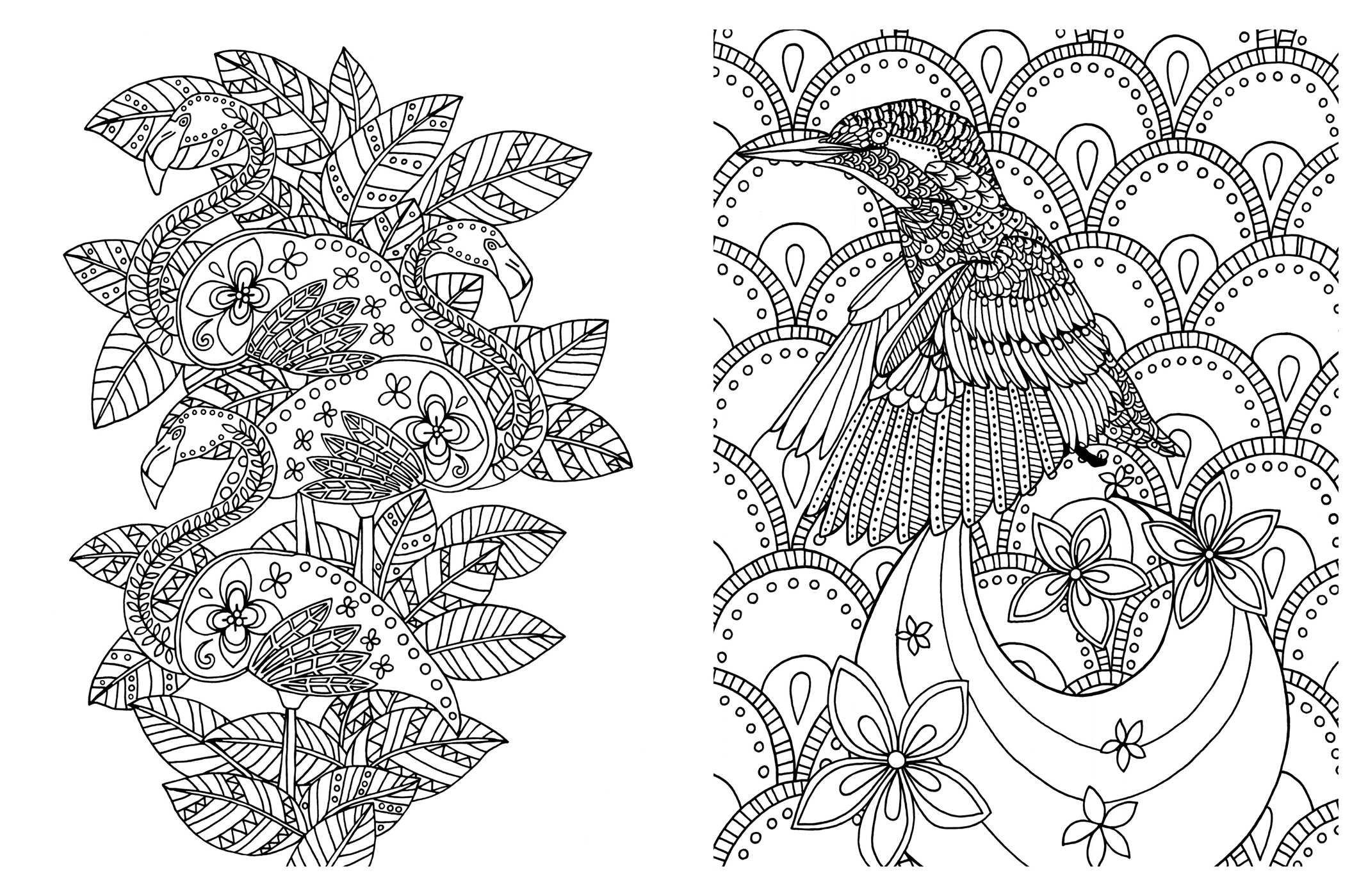 Posh Adult Coloring Book Soothing Designs For Fun Relaxation Books Amazoncouk Andrews McMeel Publishing 0050837348899