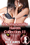The Werewolf's Harem Collection 11