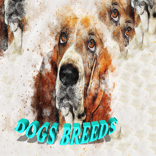 - dogs breed