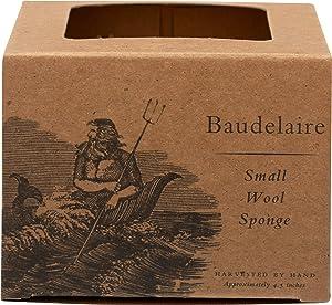 Baudelaire, Sea Sponge Caribbean Wool 4.5 In, 1 Count
