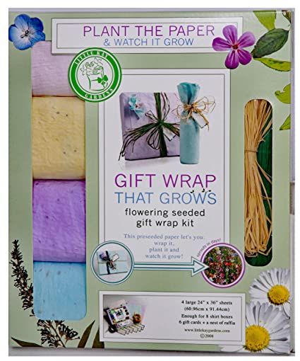Amazon gift wrap that grows and blooms colorful wild flowers gift wrap that grows and blooms colorful wild flowers seeded to create colorful garden mightylinksfo
