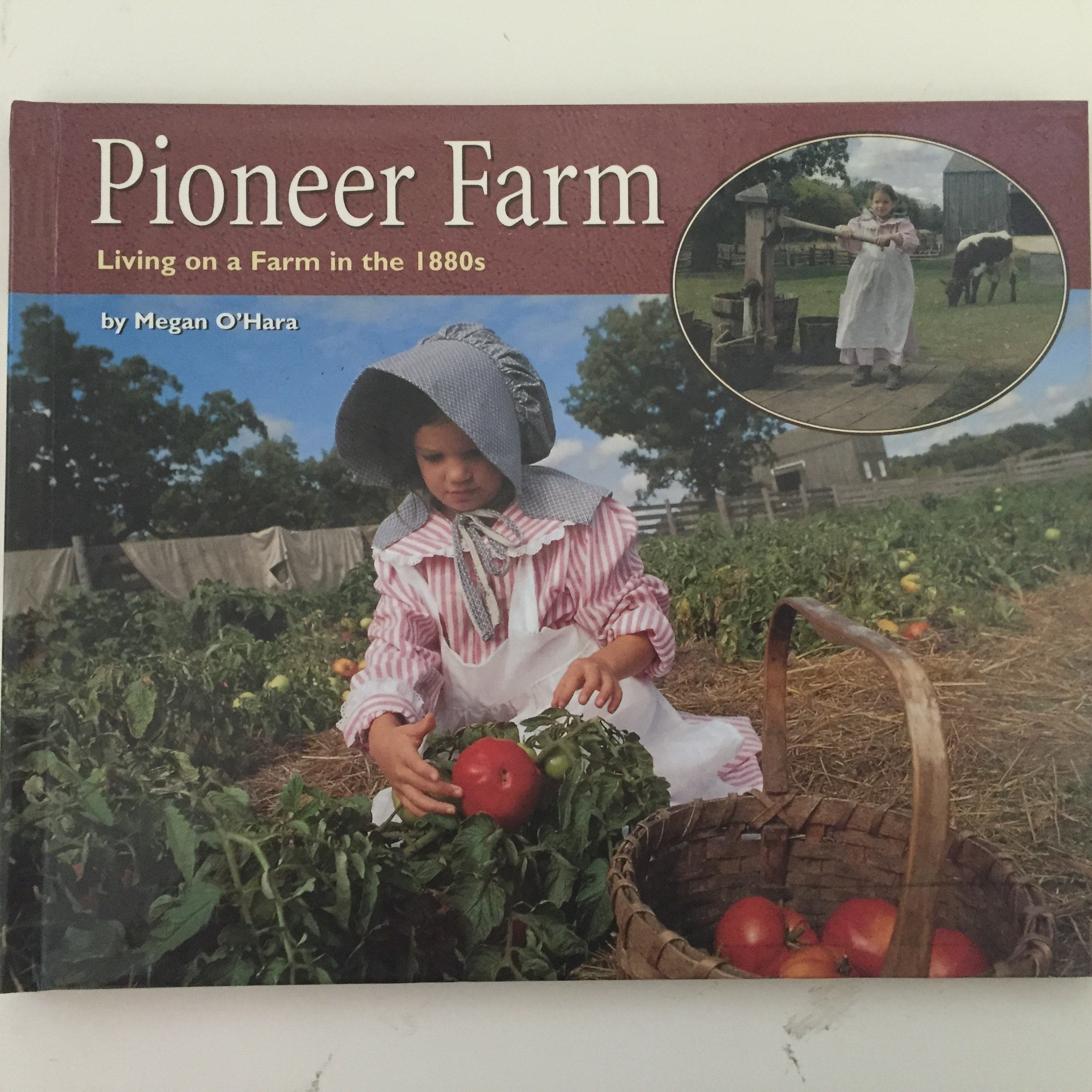 Pioneer Farm: Living on a Farm in the 1880s (Living History)