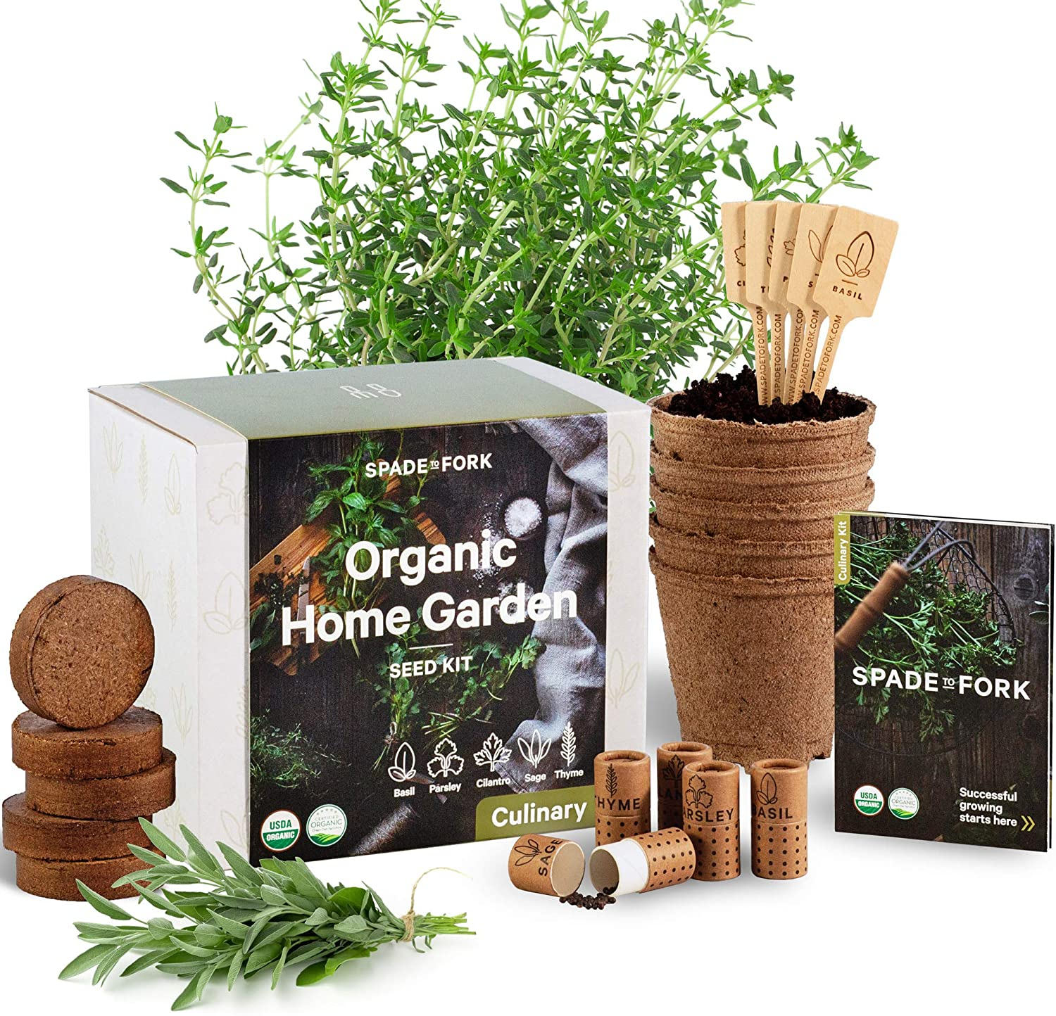 If you can't grow herbs in your shaded garden, try using this windowsill herb starter kit instead