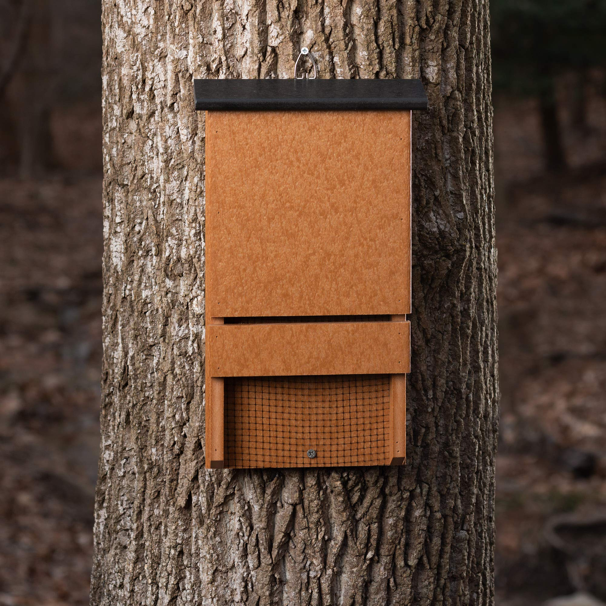 Handmade Weather Resistant Outdoor Poly Wood Bat House Bundled with Night Blooming Flower Seeds Offering Alluring Scents to Attract Insects by Amish Designed (Image #5)