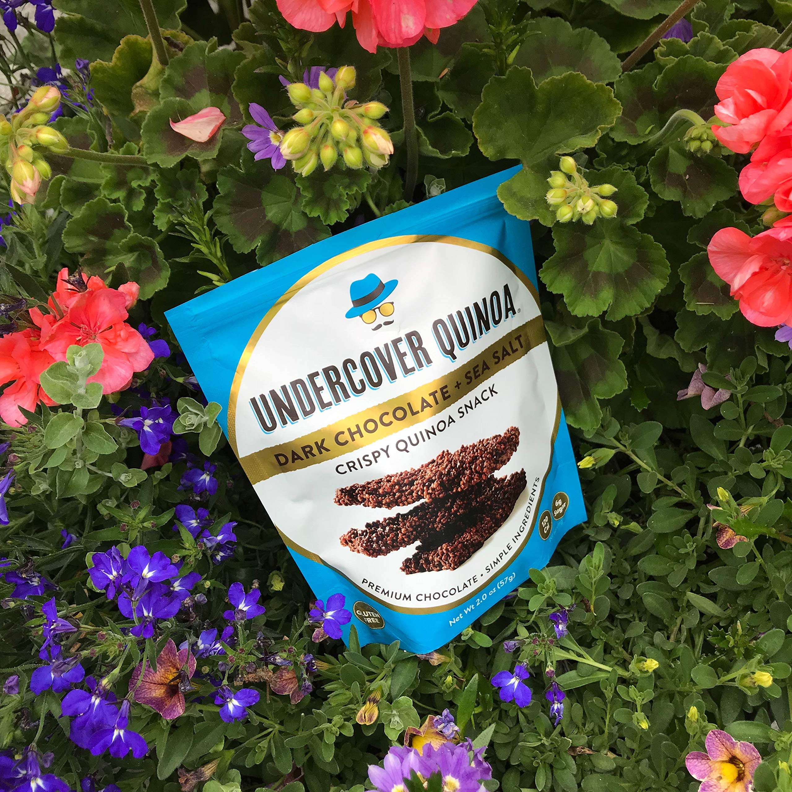 UNDERCOVER CHOCOLATE CO Dark Chocolate Sea Salt Quinoa Snack, 2 OZ