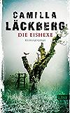 Die Eishexe: Kriminalroman (Ein Falck-Hedström-Krimi 10)