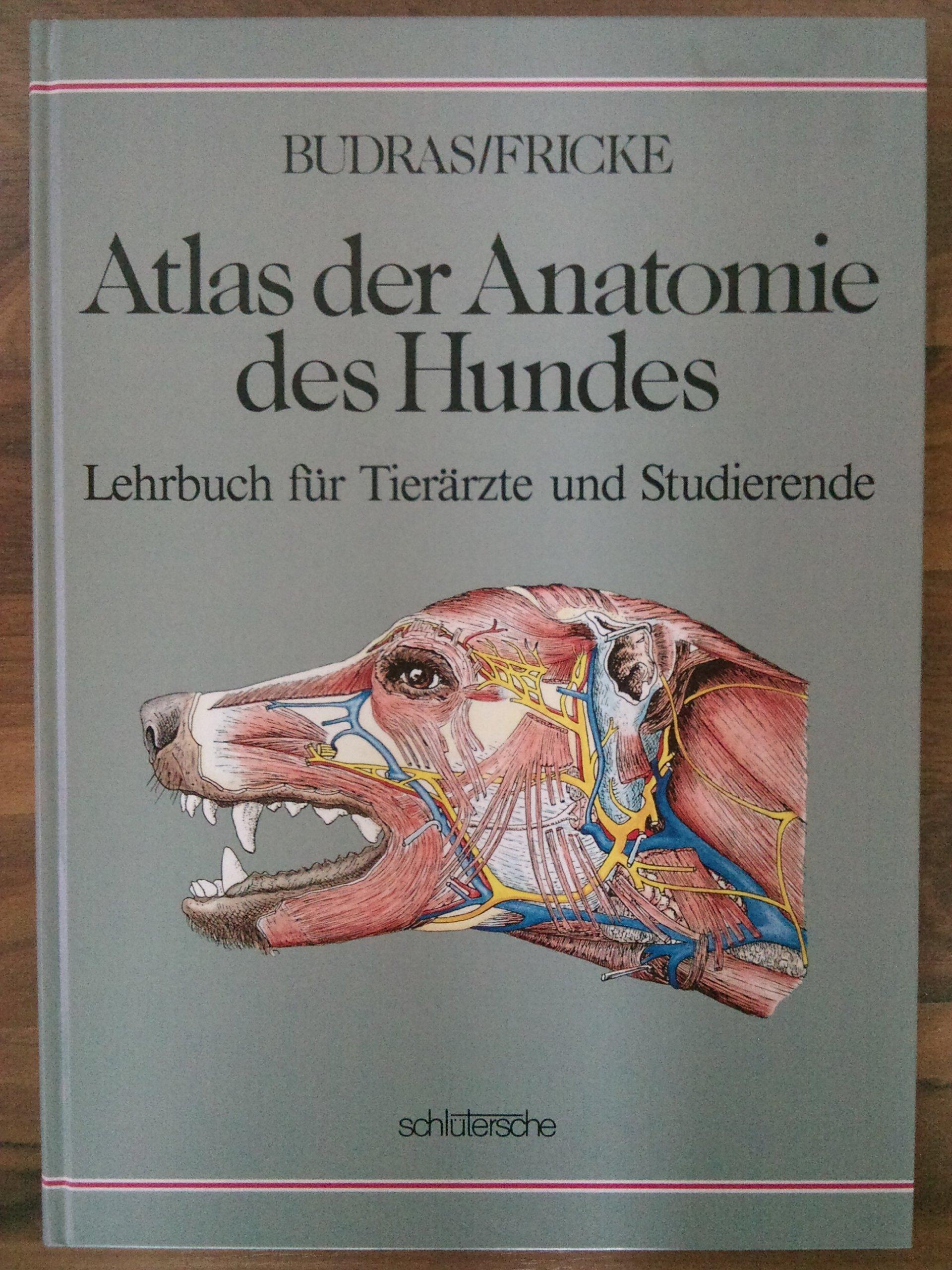 Atlas der Anatomie des Hundes. Lehrbuch für Tierärzte und ...