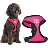 Gooby Dog Harness - Soft Mesh Head-in Small Dog Harness with Breathable Mesh - Perfect on The Go Mesh Harness for Small…