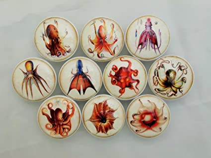 Charmant Set Of 10 Octopus Cabinet Knobs