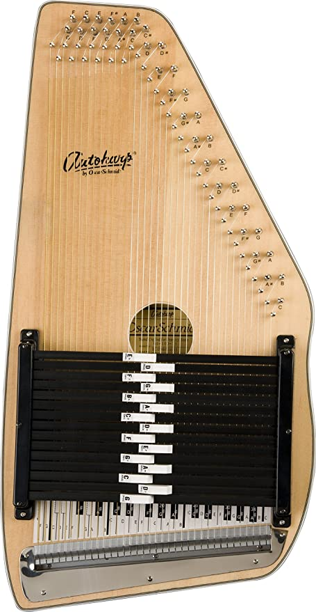 Image result for autoharp
