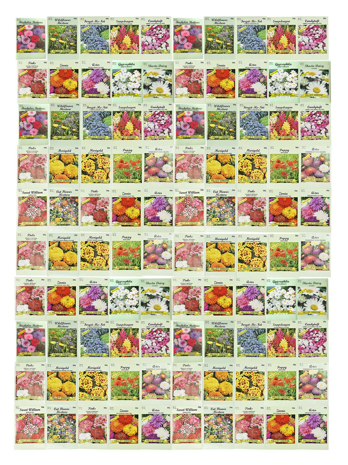 Set of 100 Assorted Valley Green Flower Seed Packets! Flower Seeds in Bulk - 20+ Varieties Available!