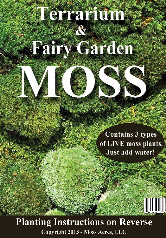 Amazon Com Terrarium Fairy Garden Moss Moss Control Products