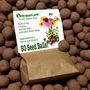 US Native Wildflower Seed Bombs for Pollinators (50 Pack). Regional Wildflower Mix Seed Balls for Guerrilla Gardening (Midwest)