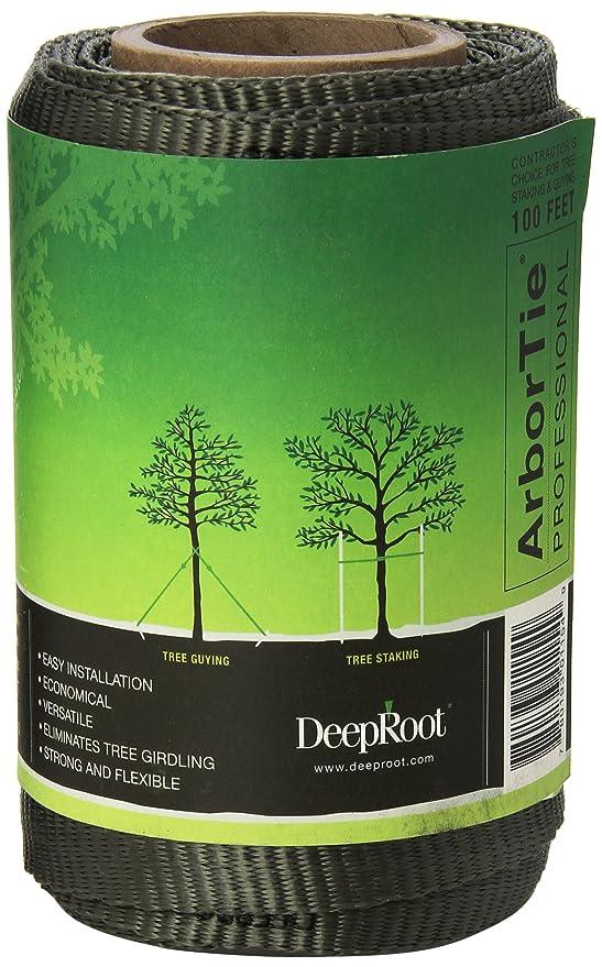 amazon com deeproot arbortie staking and guying material 100 feet roll olive tree ties garden outdoor