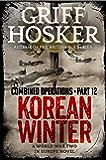 Korean Winter (Combined Operations Book 12)
