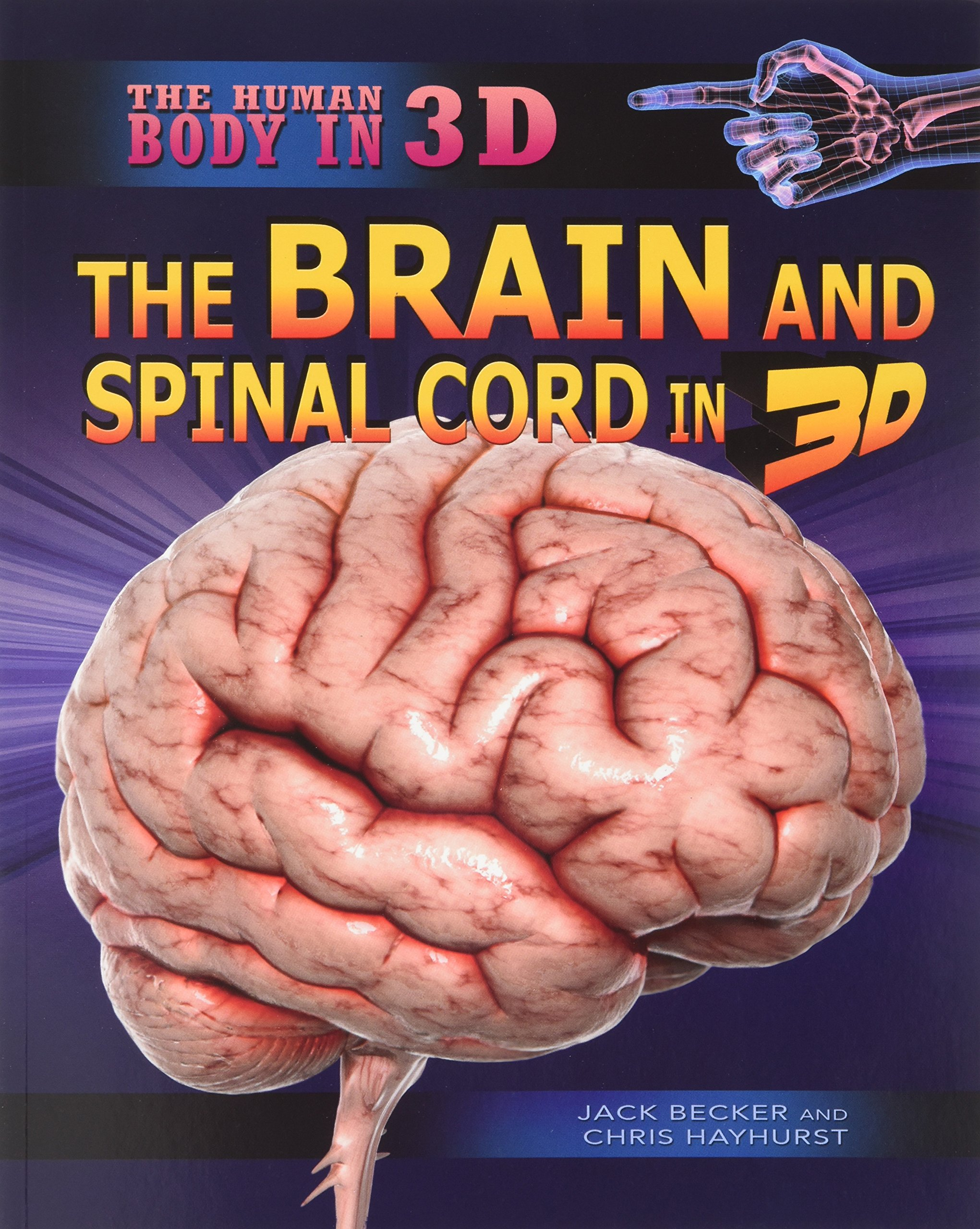 The Brain and Spinal Cord in 3D (Human Body in 3D) pdf epub