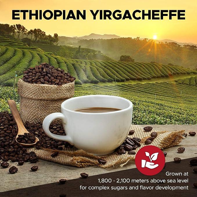 FUBAR Coffee Caf/é Op/érateur 1000 G