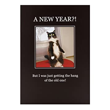 hallmark new year card funny cat medium