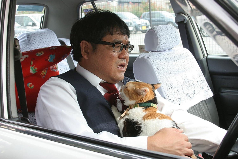 ペット動物映画猫タクシー