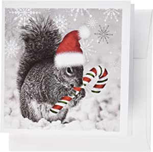 3dRose This cute Christmas squirrel has a candy cane and a Santa hat - Greeting Cards, 6 x 6 inches, set of 12 (gc_150177_2)