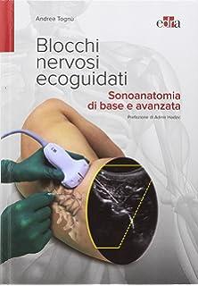 mapar protocolli di anestesia e rianimazione