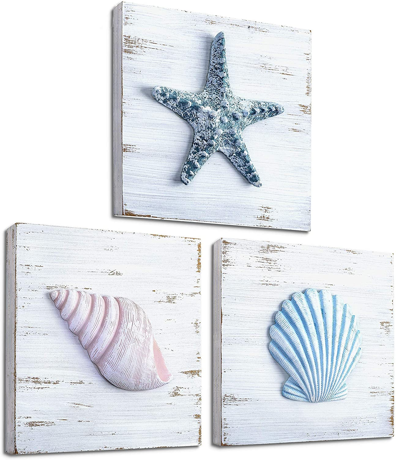 TideAndTales Beach Theme Seashell Wall Decor (Set of 10)  Shells and  Starfish Beach Decor for Bathroom, Bedroom or Living Room  Rustic Coastal  Decor
