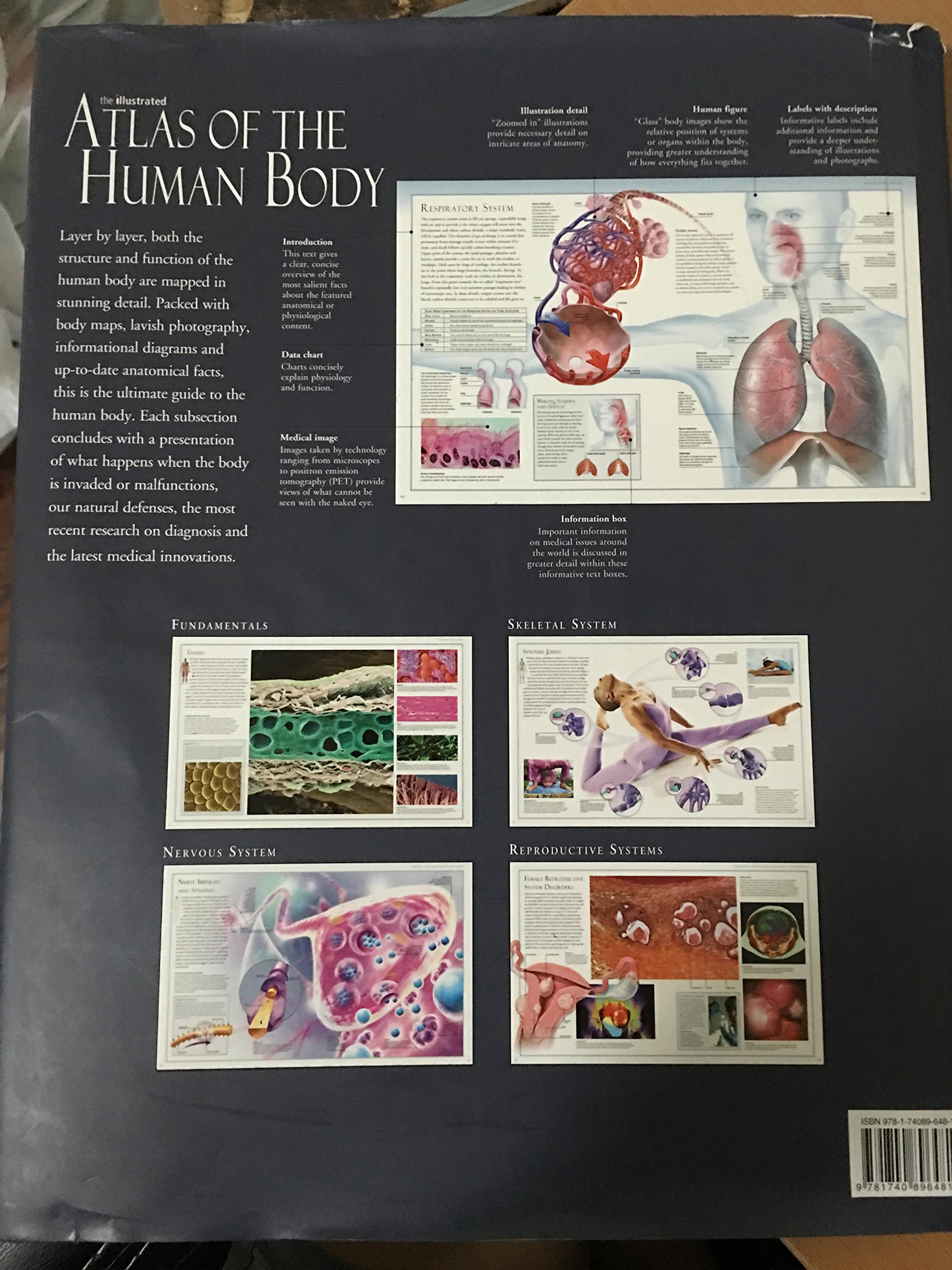 The Illustrated Atlas Of The Human Body Beverly Mcmillan