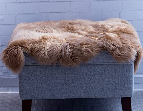 Super Area Rugs Genuine Sheepskin Rug Soft Fur Single Pelt Throw Rug for Sofa, Bed Or Floor Decor, Honey Brown