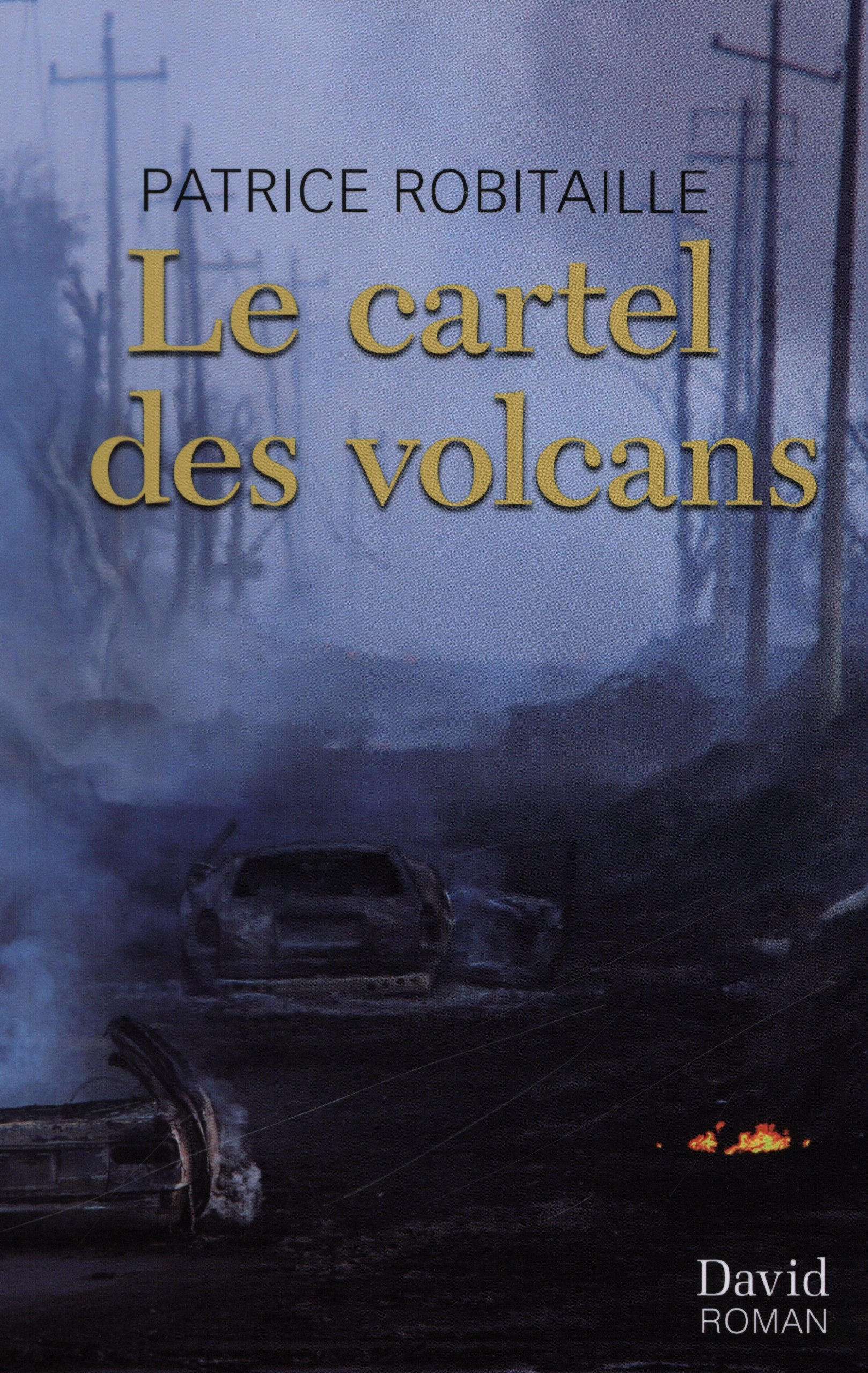 Le Cartel des Volcans: 9782895973744: Amazon.com: Books