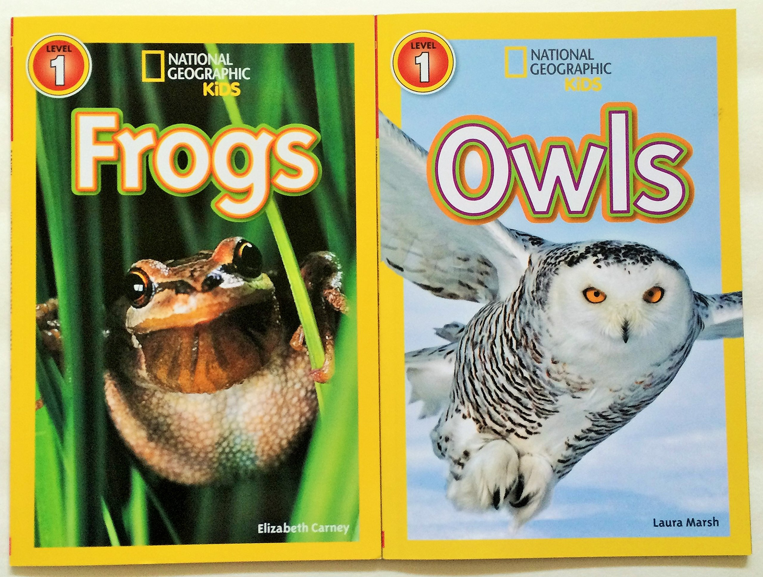 national geographic kids chapters 5 readers set frogs owls