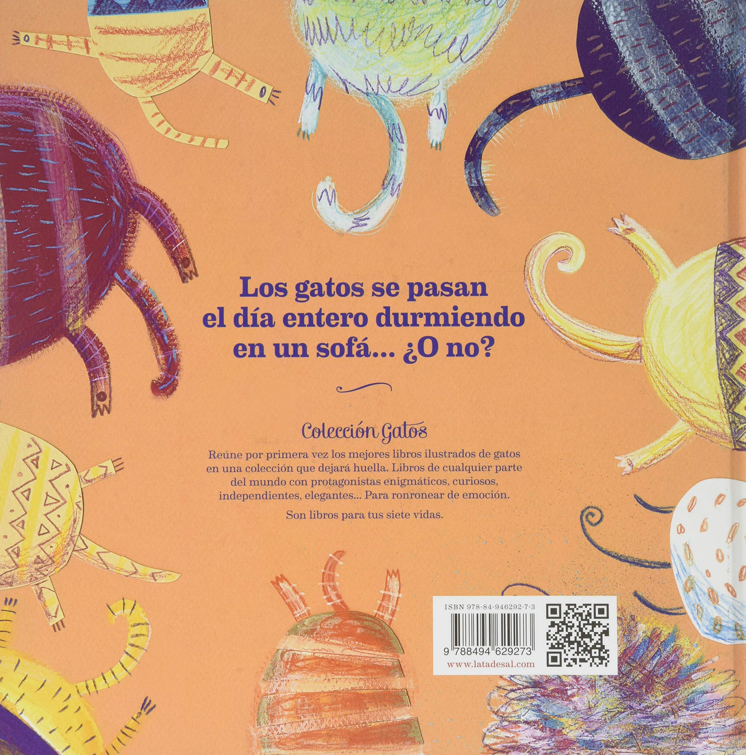 Todo Sobre Los Gatos (Spanish Edition): Monika Filipina: 9788494629273: Amazon.com: Books