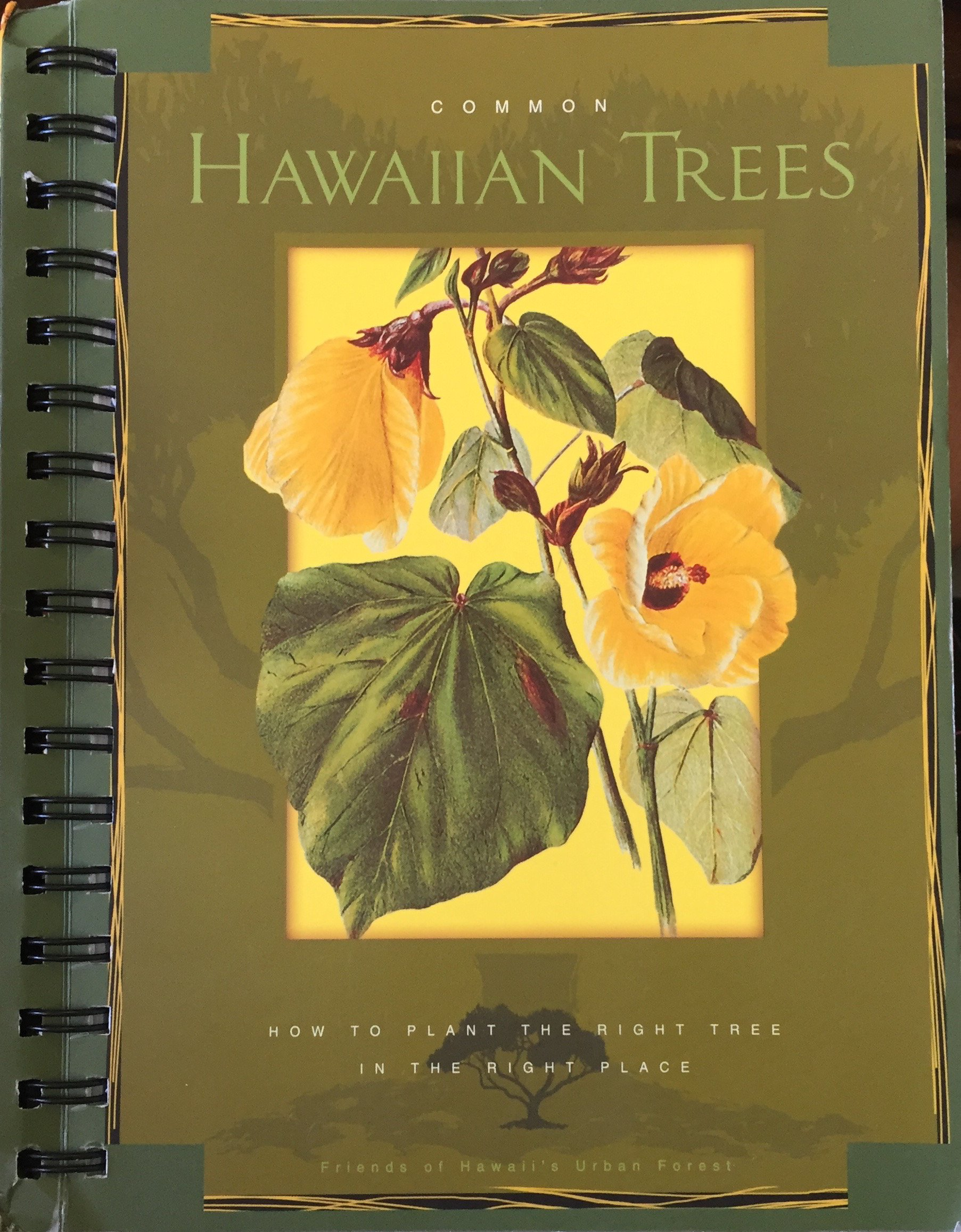 Common Hawaiian Trees: How to Plant the Right Tree in the Right Place ebook