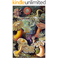 Ernst Haeckel Art Forms in Nature (Plates 1-100): (The World of Art) 100 All Original, Color Plates book cover