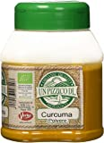Un pizzico di Curcuma in Polvere - 200 gr