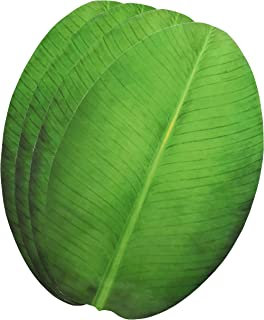 Exquisite Laminated Paper Sheets Banana Leaf Shape Table Placement/Dinning Mat Set of 4 Pcs  sc 1 st  Amazon.com & Amazon.com | Paper banana leaf for South Indian feast Onam sadya or ...