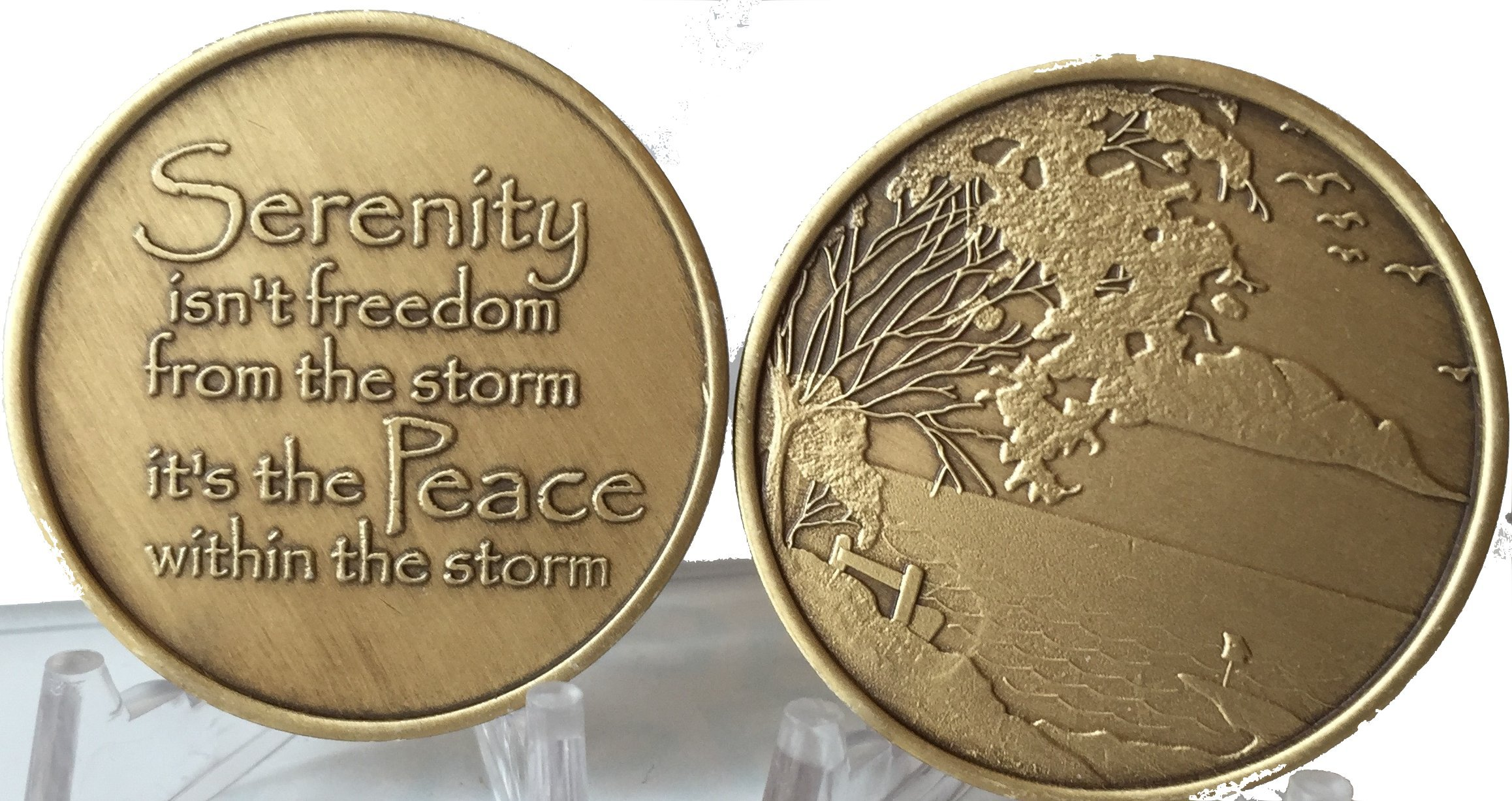 Bulk Lot of 25 Serenity Lake Peace Within The Storm Bronze Medallions Chip Wholesale Set by RecoveryChip (Image #6)