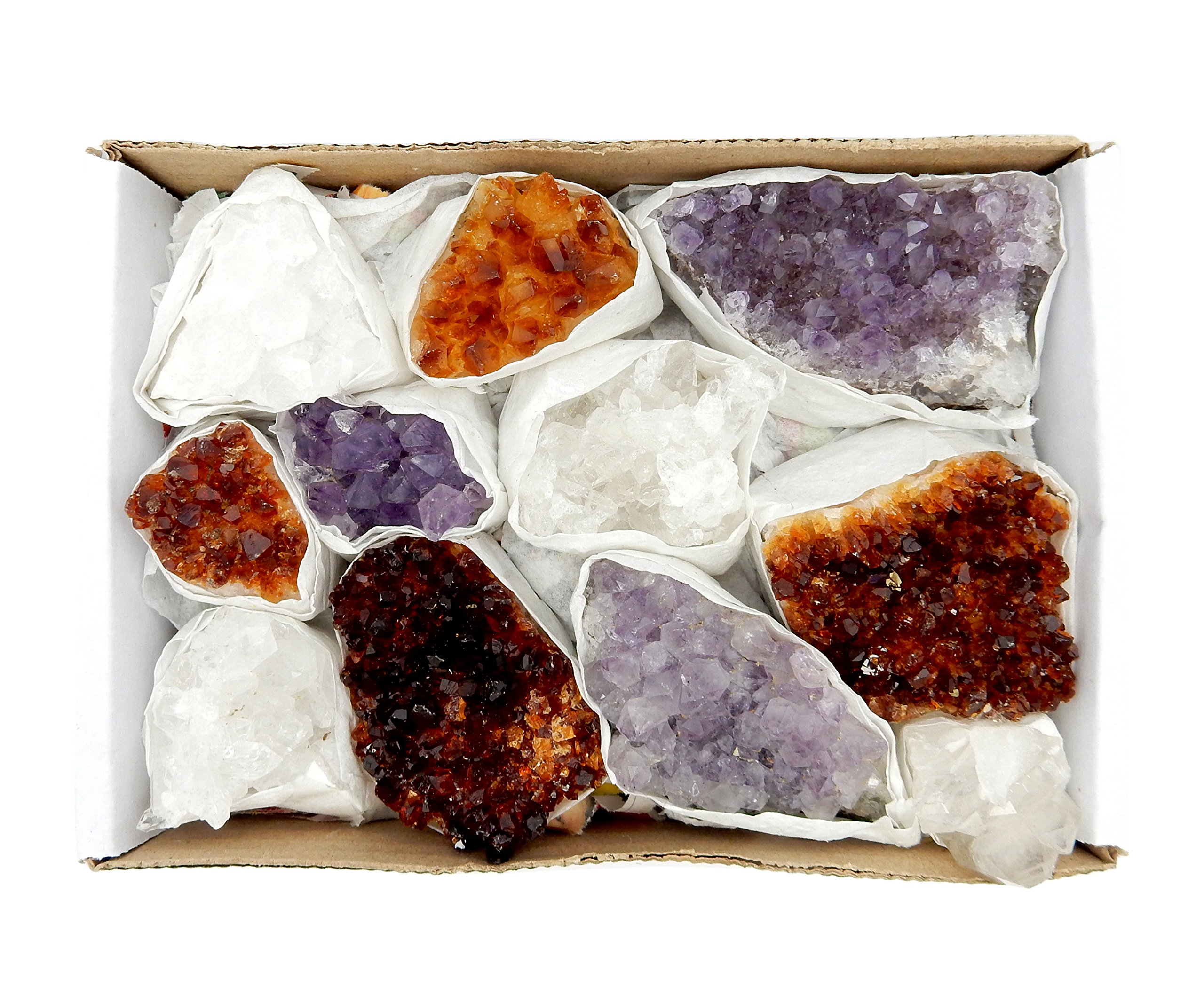 Amethyst Citrine and Crystal Cluster Flat Box w/Exclusive Rock Paradise COA by Rock Paradise Stones