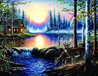 product image for Total Bliss (Large Piece) 1000 pc Jigsaw Puzzle by SunsOut - Large Oversized Easy to Grasp Puzzle Pieces