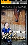 Meeting Melissa: A Contemporary Romance Fiction Novel