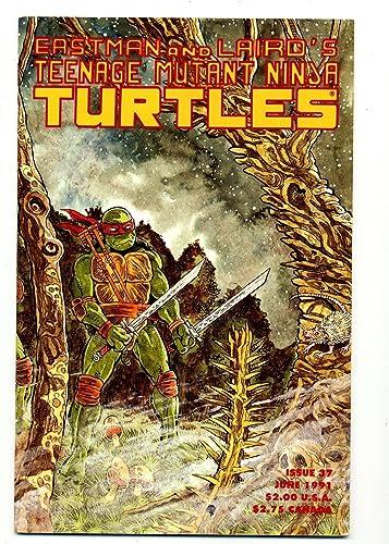 Amazon.com: Teenage Mutant Ninja Turtles #37 Clean Bright ...